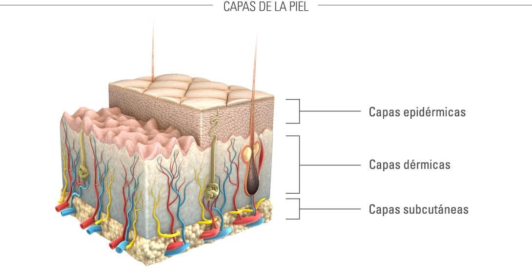 Eucerin: Envejecimiento de la piel en general